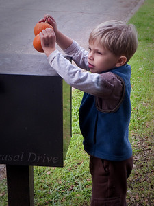 Little pumpkins on the mail box.