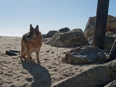 Nika in the rocks.