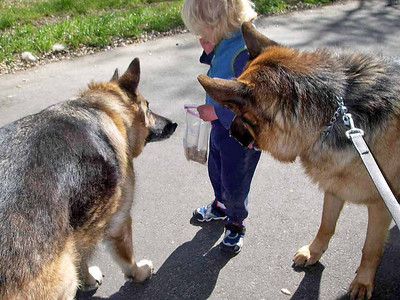 """Cookie break first """"G"""" has to make sure they are fresh enough to give to his dogs."""