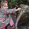 Seattle - Woodland Park Zoo - kendra on elephant