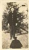 1920s, Albert H. Pahl