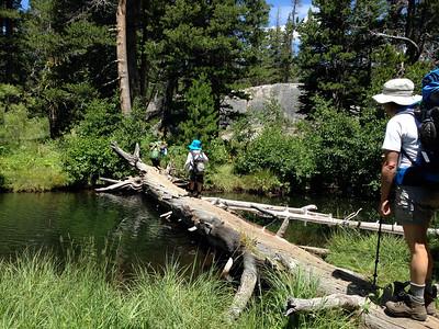 Adventures in log crossing...