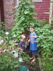 Mateo and Alec enjoyed the tent-like structure covered in bean vines,  while Kiernan displayed a Chinese bean he had just picked.  We all had fun eating sections of this l-o-n-g bean.