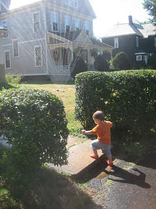 A detour en route home from the park...   Alec was captivated by a lawn sprinkler...
