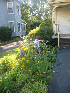 Grandsons in the perennial flower bed in our front yard.