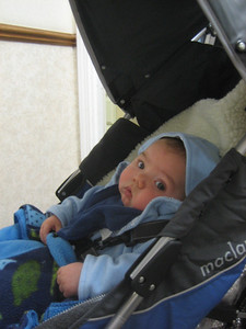 Mateo looks a bit skeptical ...  Who's this photographer? Where's mama?