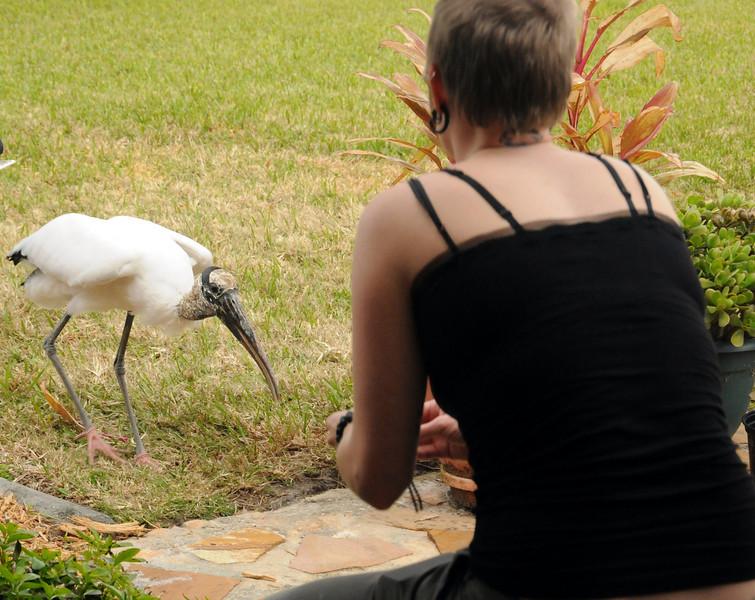 Diana makes a new friend