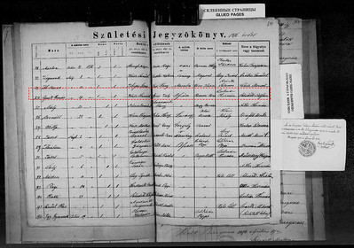 Ignatz Herman Weiss birth record
