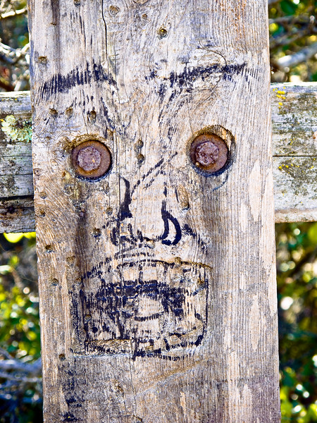 Fence post face.