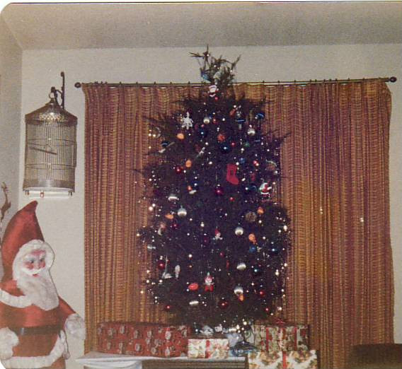 Our Tree - 1978