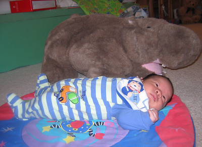 Hippo and me, 1 month-old