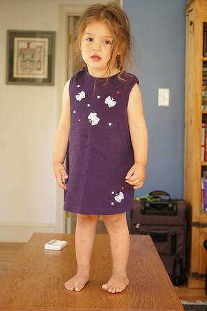 Butterfly dress.