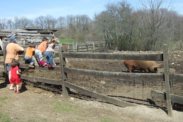 Paul, Atticus, and Gabe show Anya and Guen around Codman Farm.