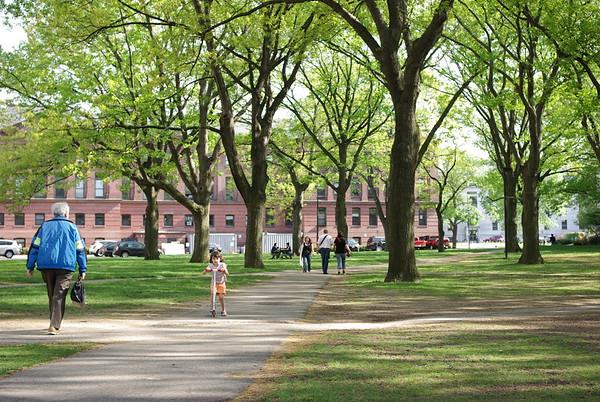 At Harvard.
