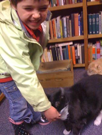 Tickly bookstore cat.