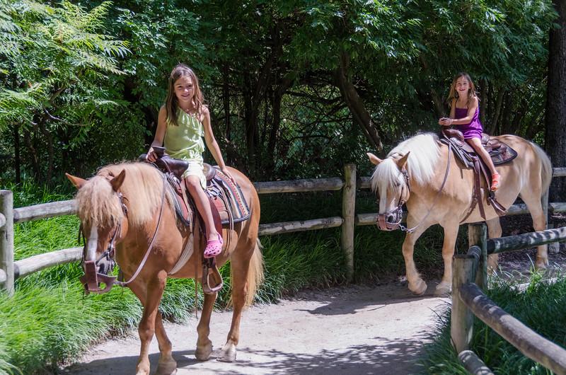 Pony rides at the Fort Wayne Zoo.