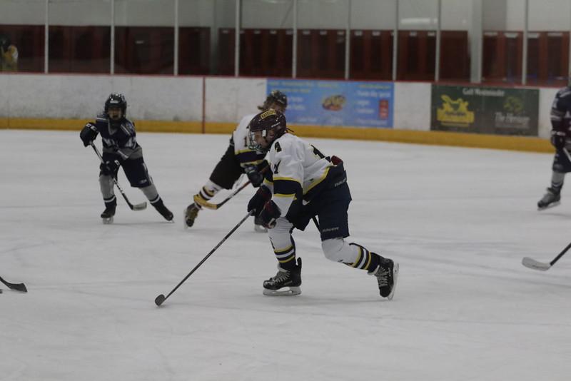 2015-Nov_25-OGradySon-Hockey_SilverSticks-JPM0071