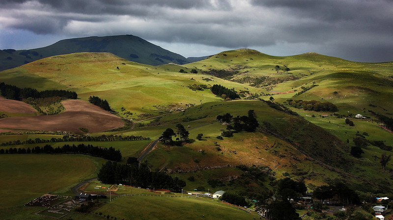"New Zealand ... ""Rolling Hills of Green"""