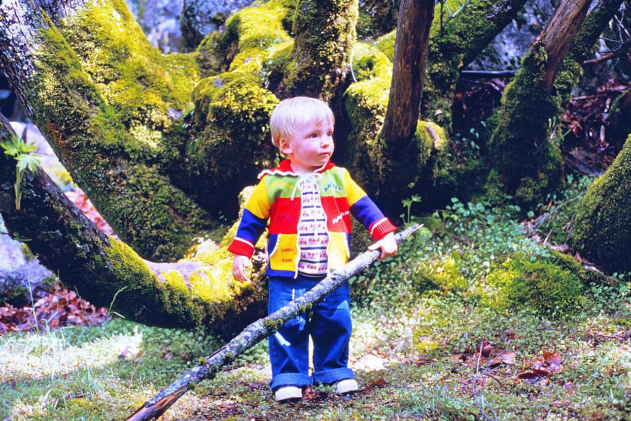 David in Yosemite, 1980