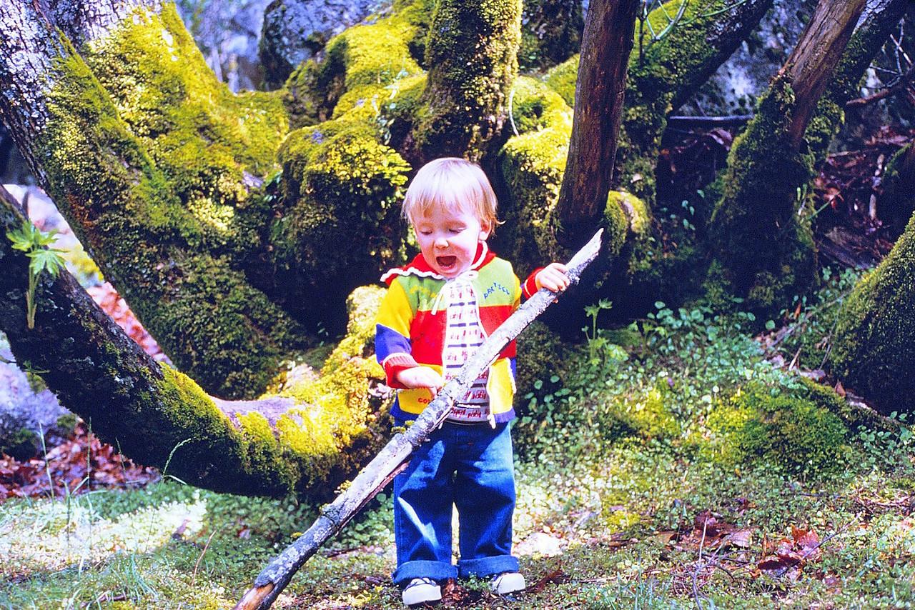 David in Yosemite 3, 1980