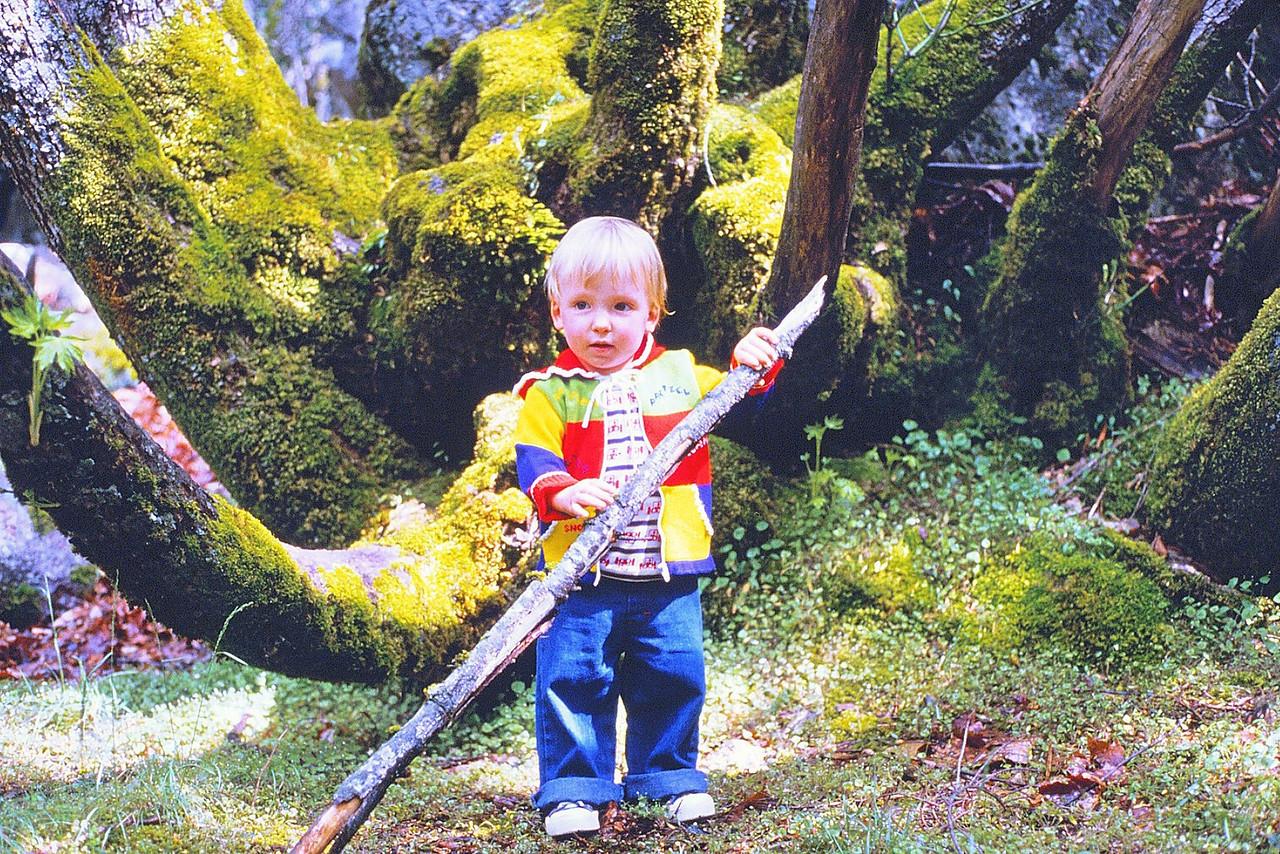 David in Yosemite 2, 1980