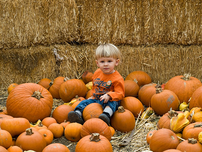 Cody in the pumpkins. What a geat picture dada!
