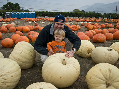 Look at all of these pumpkins Cody!