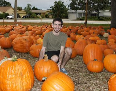halloween pumpkin patch