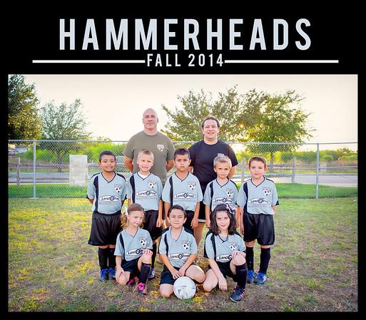 hammerheads2