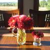 Flowers by Kim...