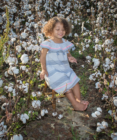 Harper's Cotton Field Session   Sept 2017