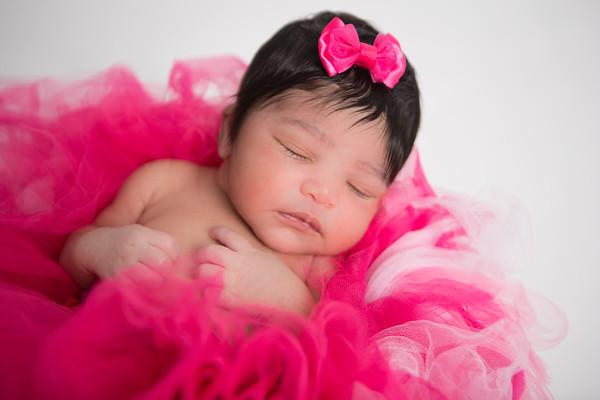 Harris Family Newborn Photoshoot