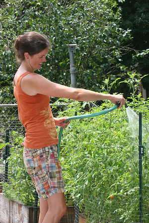 Catherine watering her tomato plants