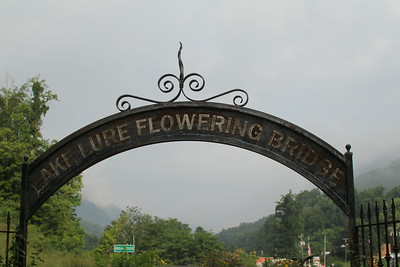 Designed and maintaind by community volunteers, the Flowering Bridge emphasizes plants native to the Hickory Nut Gorge and Southeastern mountains.  It was retired in 2011 when a new bridge was completed.