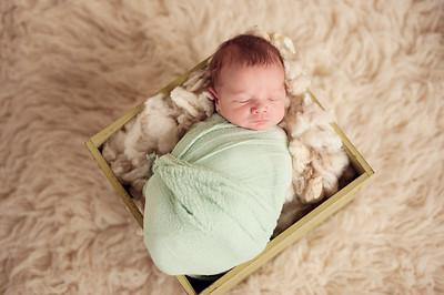 Harvey S. - Newborn