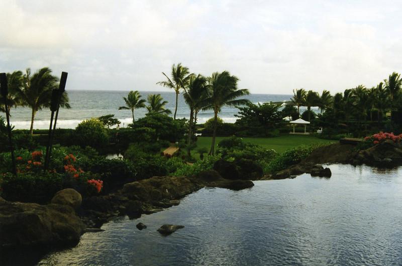 "In Kauai, Hawai'i, late summer 1997.<br />  <a href=""http://www.kauai-hawaii.com/"">http://www.kauai-hawaii.com/</a><br />  <a href=""http://www.kauaidiscovery.com/"">http://www.kauaidiscovery.com/</a><br />  <a href=""http://www.gohawaii.com/kauai/"">http://www.gohawaii.com/kauai/</a>"