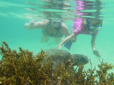 Hawaii 2010-July