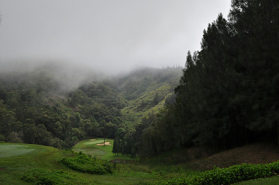 Koele course 17th hole (signature hole) in the morning mist.