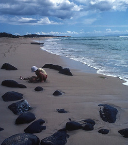 Kauai - Marla on Mahaulepu Beach