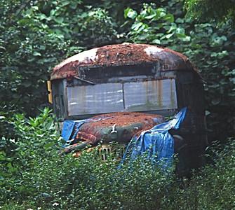 Big Island - saw this somewhere?