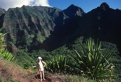 Kauai - Na Pali coast