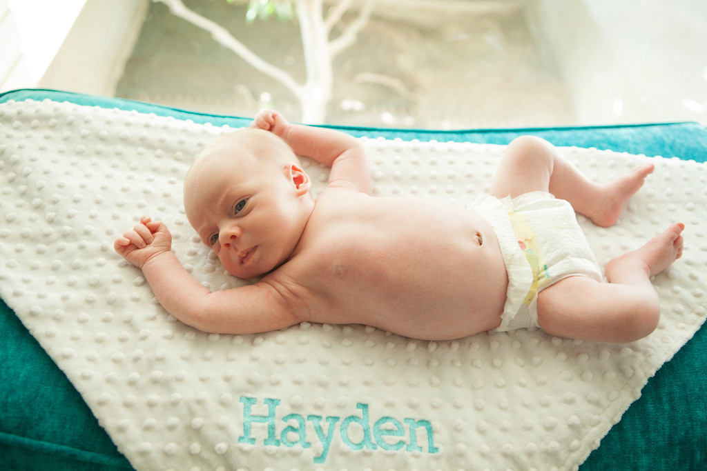 0017hayden