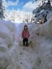 Hazel, Fresh snow_036
