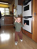 Karl blends in with kitchen_2744