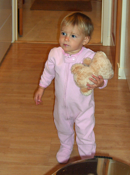 Taking bear to find Bubbie in kitchen