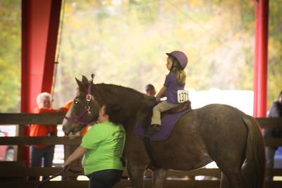 Heart of Phoenix Horse Show 10 25 2015