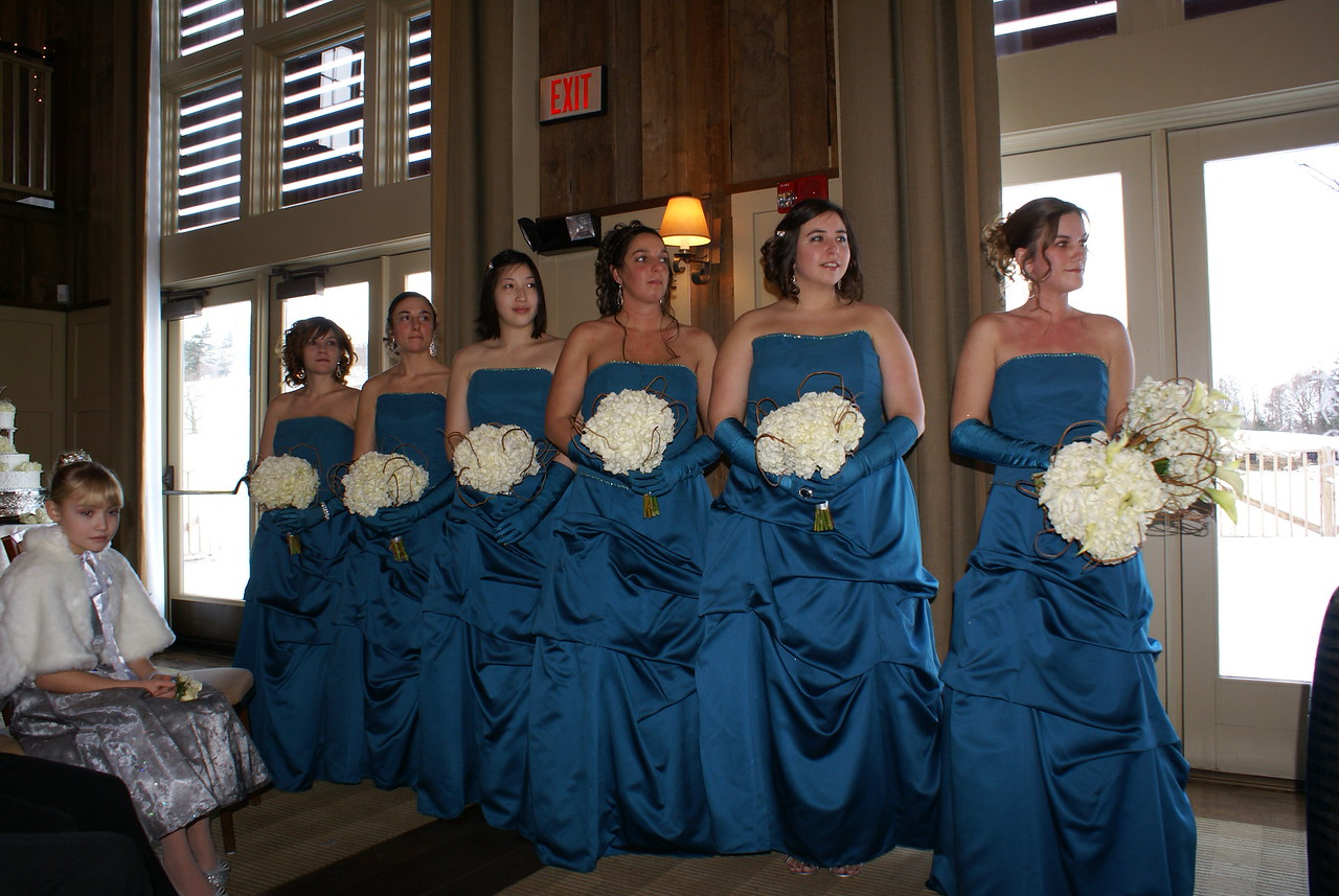 The bridesmaids. The bride's sister, Mistyfaye, is the maid of honor on the far right.