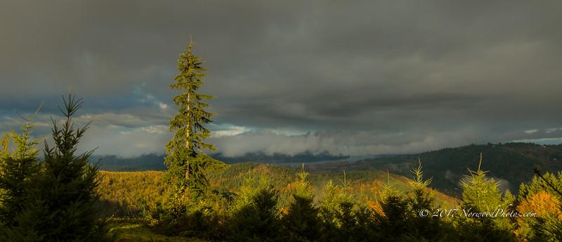 Hermit Ridge<br /> 11/17/17<br /> 9:41 AM