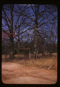 407 Forrest Blvd 1946