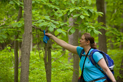 Linda retrieves Shadows present we left hanging so we wouldn't have to carry it with us.